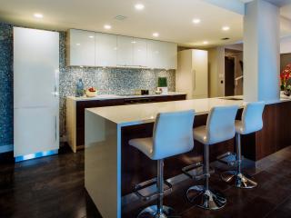 Designer's Contemporary Kitchen